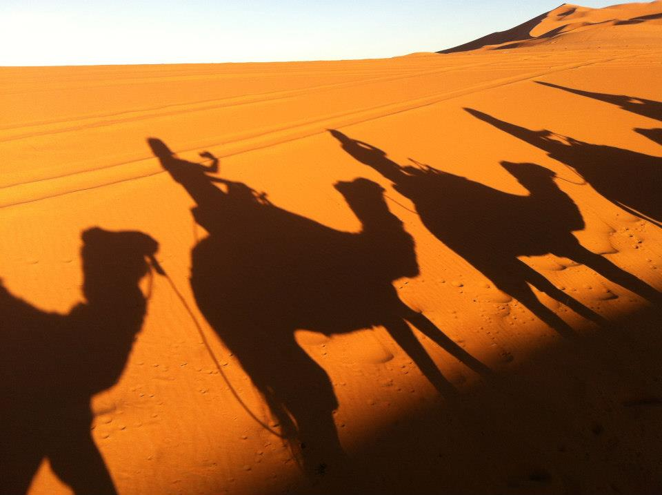 camel riding in sahara
