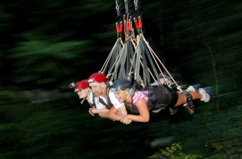 Zipping through the rainforest at 70 MPH